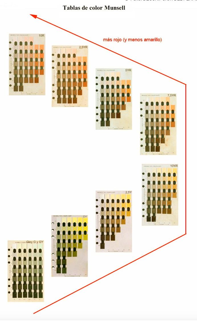 Bonito Munsell Libro De Colores Del Suelo Galería - Ideas Para ...